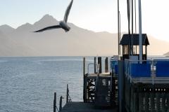Copyright-Achim-Kaeflein-Neuseeland-2051