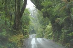 Copyright-Achim-Kaeflein-Neuseeland-3075