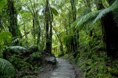 Copyright-Achim-Kaeflein-Neuseeland-3090